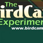 The BirdCam Experiment
