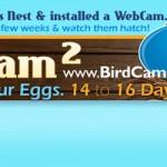 BirdCam2