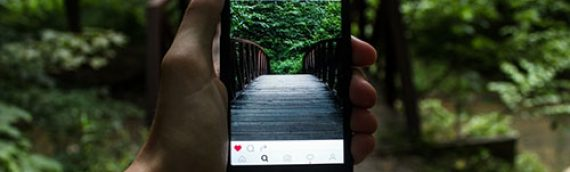 15 Strategies To Grow An Instagram Audience